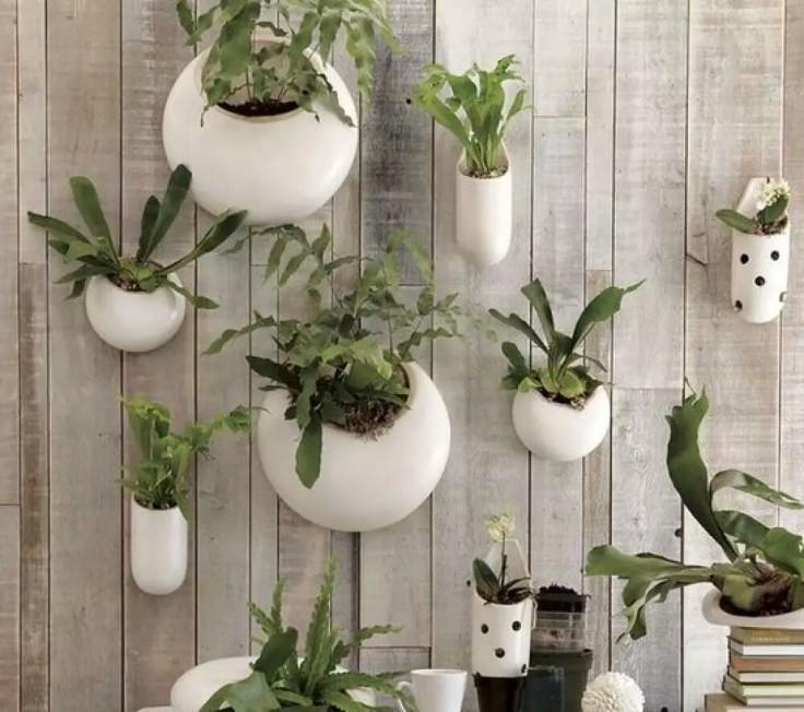 wall-garden-plant-pots01